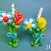 (Kimp-106) Õhupallide lillekimp 106