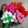 (Kimp-030) Šokeeriv sõbrapäeva ning Valentini päeva õhupallide lillekimp №30