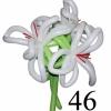 (Kimp-046) Õhupallide lillekimp 46