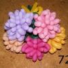 (Kimp-072) Õhupallide lillekimp 72